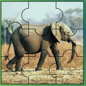 παιχνιδια με ζωα ελεφαντας