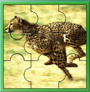 παιχνίδια με ζώα τζάγκουαρ