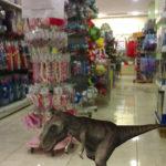 Διαδραστικό βιβλίο με δεινόσαυρους