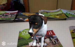 σκύλος- ζώα της φάρμας